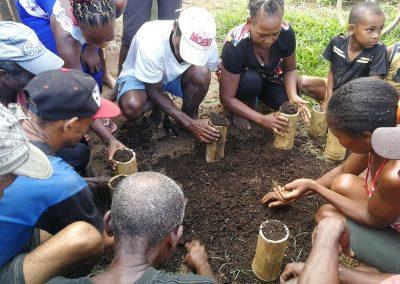 Formation sur la pépinière de vanille, Ankazomena, Mai 2019